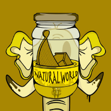Album cover for CWM0011 Natural World