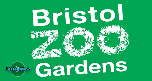Bristol Zoo Music